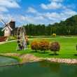 Garden And Windmill — Stock Photo