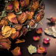 Dry Rose Wilted — Stock Photo