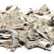 Stock Photo: Bone ash