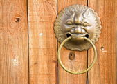 Door With Dragon Handle Head — Stock Photo