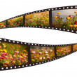 Films strip with beautiful nature pictures — Stock Photo