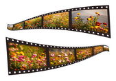Films strip with beautiful nature pictures — Photo