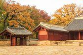 Koreański Pałac i sezon zimowy — Zdjęcie stockowe