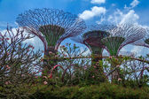 Gardens by the Bay Day  — Stock Photo