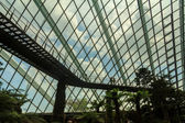 Cloud Forest Dome — Stock Photo