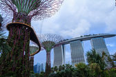 Gardens by the Bay Dusk — Stock Photo