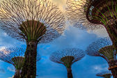 Gardens by the Bay Twilight — Stock Photo