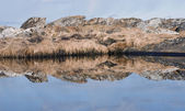 Reflections in nature — Stock Photo