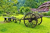 Carrello sull'erba — Foto Stock