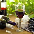 Red wine, grape, Brie and Camembert cheeses — Stock Photo