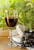 Red wine, grape, Brie and Camembert cheeses — Stockfoto