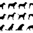 Dogs vector - Stock Vector