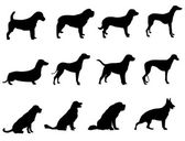 Hundar vektor — Stockvektor