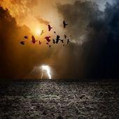 Dark landscape — Stock Photo