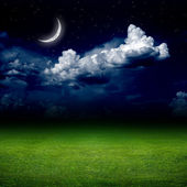 Night, green field — Stock Photo