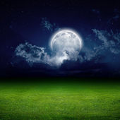 Night, green field — Stockfoto