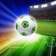 Brazil soccer live — Stock Photo #47756065