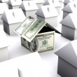 A house made of money dollars — Stock Photo #14002753