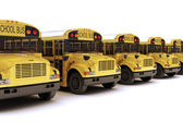 School buses with white top — Stock Photo