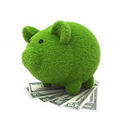 Grass covered piggy bank on top of money , ecology savings — Stock Photo