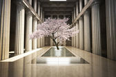 Cherry tree in the interior of a building — Foto Stock