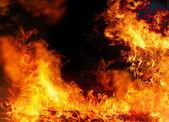 Burning fire background on black — Stock Photo