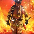Fire fighter searching for survivors — Stock Photo #30164533