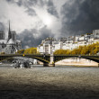 Paris and the Seine — Stock Photo