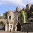 Windsor castle — Stock Photo #12368023