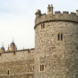 Windsor castle — Stock Photo #12368030