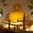Buddha — Stock Photo #14067585