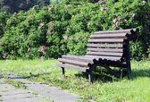 Romantic bench — Stock Photo