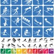 Winter Sports Symbols — Stock Vector