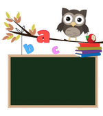 Owl back to school isolated — Stock Photo