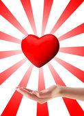 捐赠器官 — 图库照片