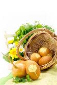 Weidenkorb mit farbigen eiern isoliert auf weiss — Stockfoto