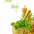 Mortar with fresh herbs and other kitchen objects isolated — Stock Photo #46833677