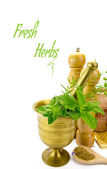 Mortar with fresh herbs and other kitchen objects isolated — Stock Photo