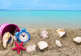Shells,clock and bucket on sandy beach with sea in the background — Stock Photo