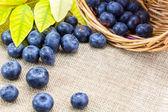 Bleuets dans le panier avec les feuilles sur toile de lin — Photo