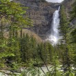 Takakkaw Falls — Stock Photo