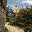 National Cathedral — Stock Photo