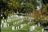 Arlington Cemetery — Stock Photo