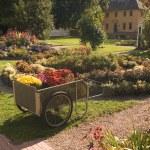 New England Garden — Stock Photo #33528809
