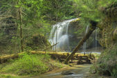 Hocking HIlls Waterfall — Stock Photo