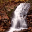Forest Waterfall — Stock Photo #33538439