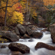 Autumn Forest Cascade — Stock Photo