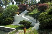 Escadas brancas — Fotografia Stock