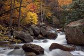 Autumn Forest Cascade — Stock Photo