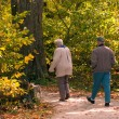 Seniors Enjoying a Walk — Stock Photo